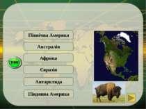 Південна Америка Північна Америка … - материк, де є дерево-гігант секвойя та ...