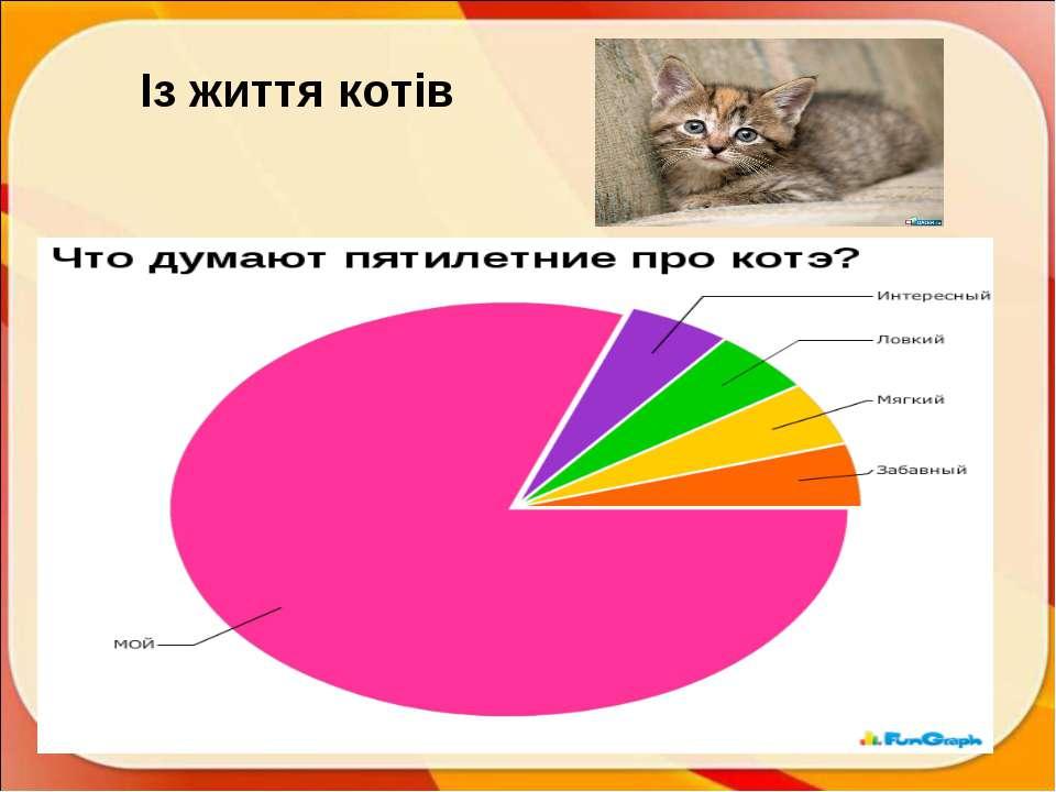 Із життя котів