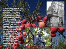 Данте стверджував, що його родина походить від давніх Римлян, (Inferno, XV, 7...