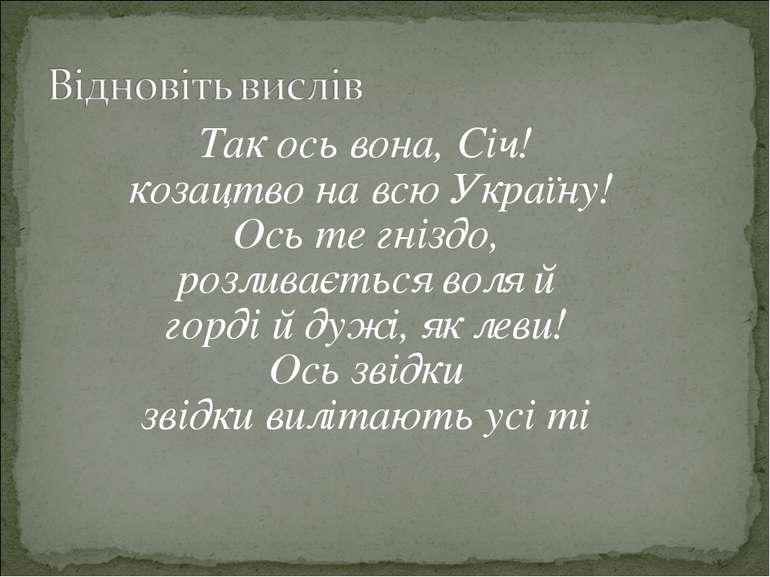 Так ось вона, Січ! козацтво на всю Україну! Ось те гніздо, розливається воля ...