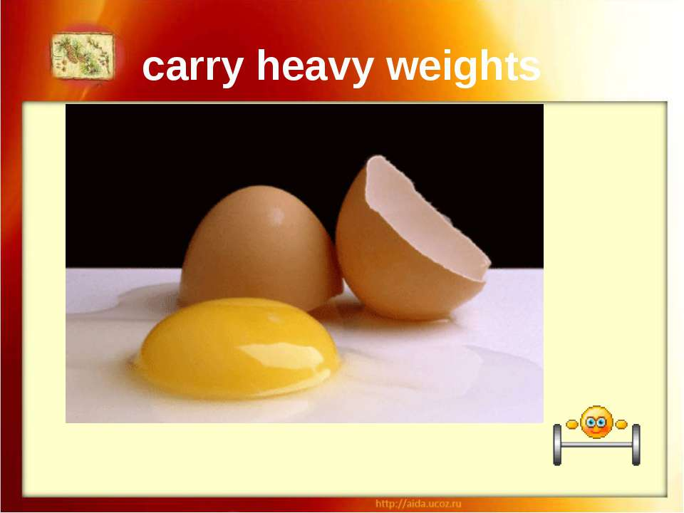 carry heavy weights If you eat a raw egg before eating anything else on Chris...