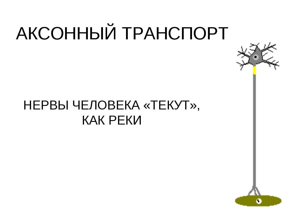 АКСОННЫЙ ТРАНСПОРТ НЕРВЫ ЧЕЛОВЕКА «ТЕКУТ», КАК РЕКИ