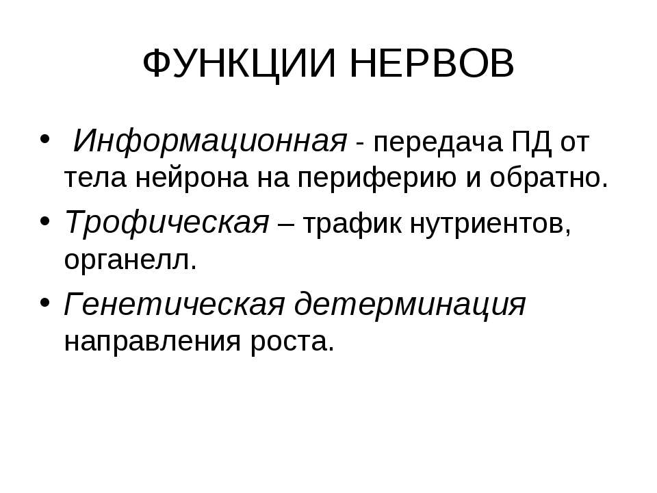 ФУНКЦИИ НЕРВОВ Информационная - передача ПД от тела нейрона на периферию и об...