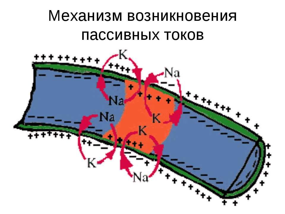 Механизм возникновения пассивных токов