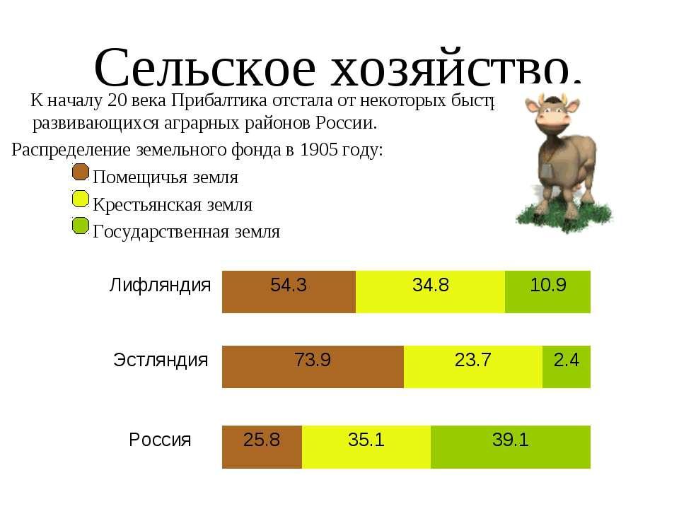 Сельское хозяйство. К началу 20 века Прибалтика отстала от некоторых быстро р...