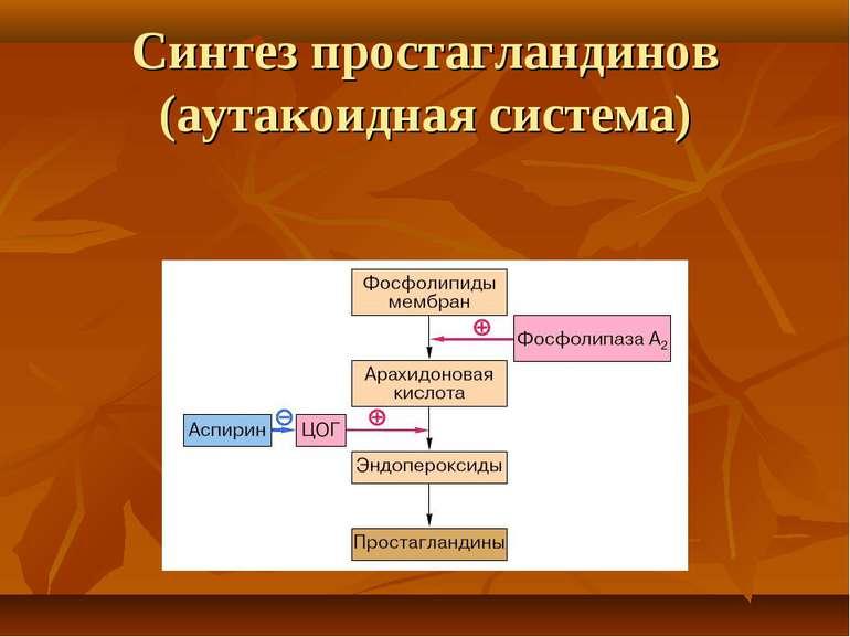 Синтез простагландинов (аутакоидная система)