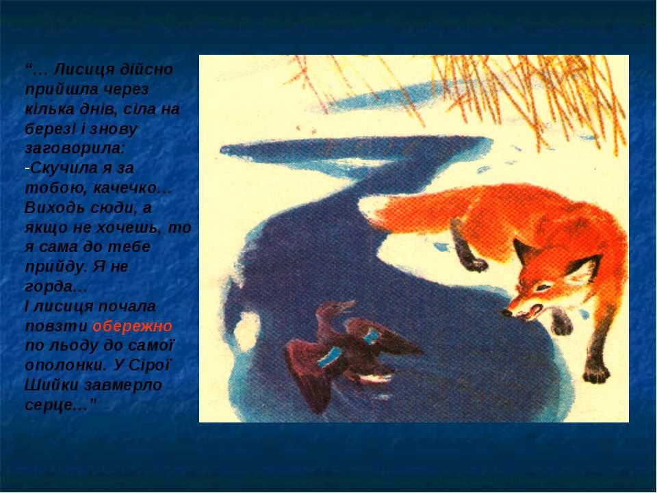 """""""… Лисиця дійсно прийшла через кілька днів, сіла на березі і знову заговорила..."""