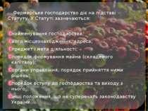 Фермерське господарство діє на підставі Статуту. У Статуті зазначаються: найм...