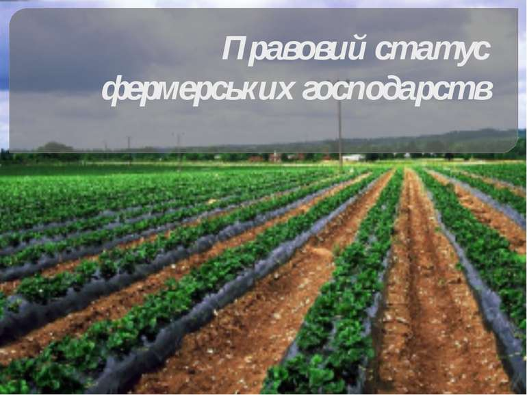 Правовий статус фермерських господарств