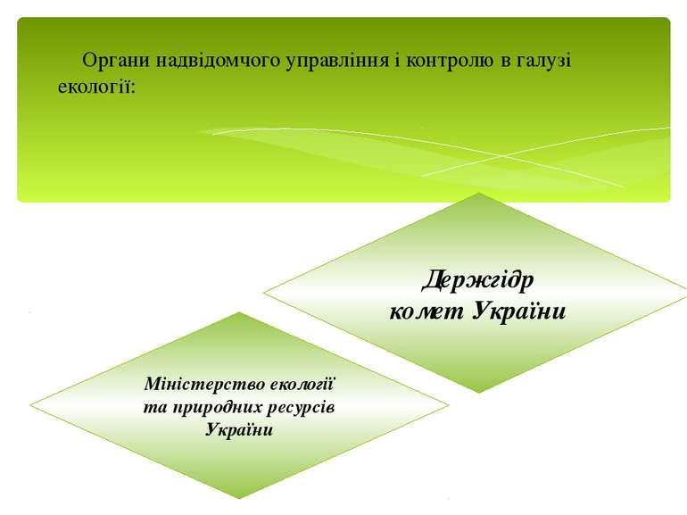 Органи надвідомчого управління і контролю в галузі екології: Міністерство еко...