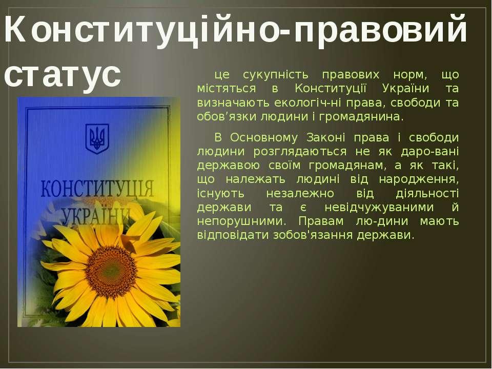 це сукупність правових норм, що містяться в Конституції України та визначають...