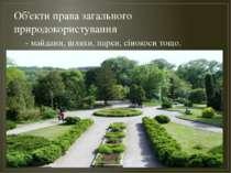 Об'єкти права загального природокористування - майдани, шляхи, парки, сінокос...