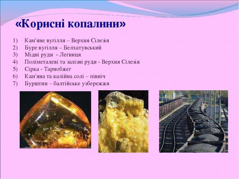 «Корисні копалини» Кам'яне вугілля – Верхня Сілезія Буре вугілля – Белхатувсь...