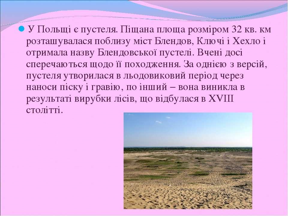 У Польщі є пустеля. Піщана площа розміром 32 кв. км розташувалася поблизу міс...