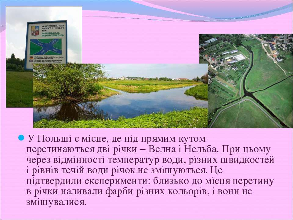 У Польщі є місце, де під прямим кутом перетинаються дві річки − Велна і Нельб...