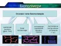 Біополімери * Основні типи биополімерів нуклеїнові кислоти (ДНК, РНК) білки п...