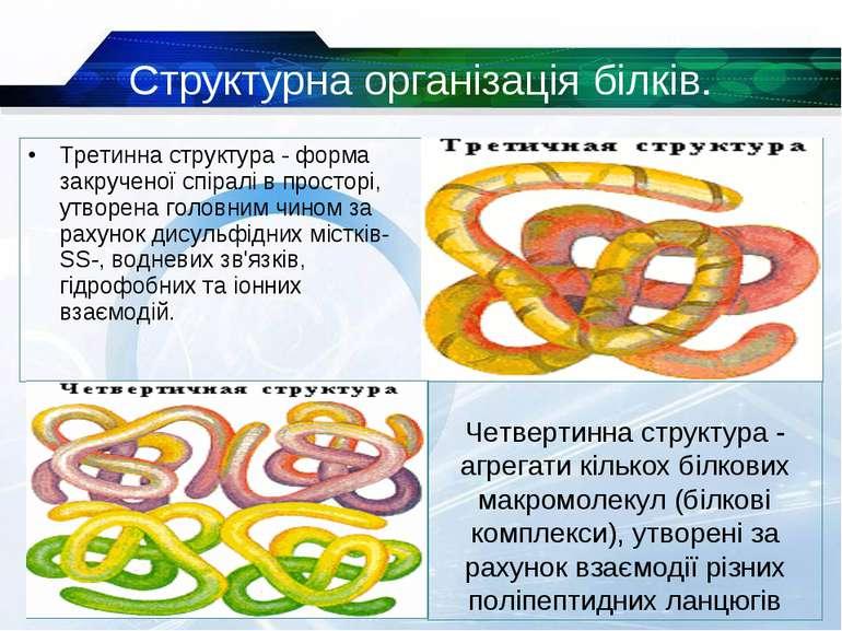 Третинна структура - форма закрученої спіралі в просторі, утворена головним ч...