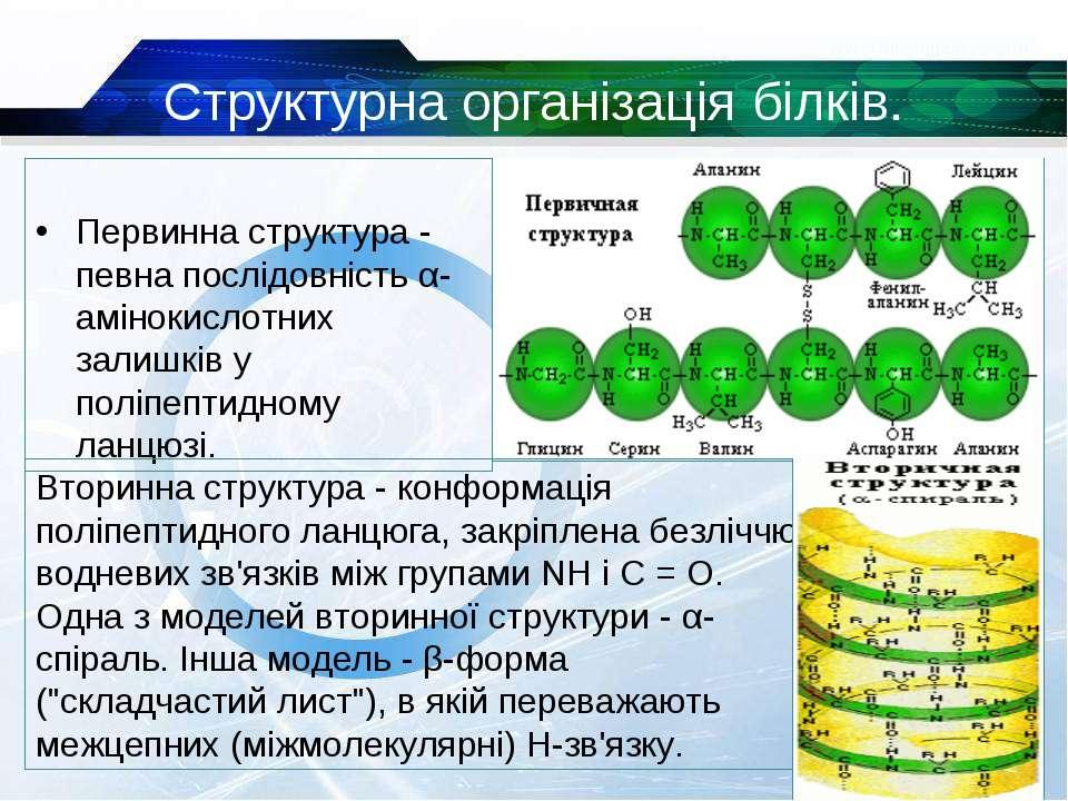 Структурна організація білків. Первинна структура - певна послідовність α-амі...