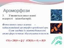 Ароморфози 3. З'являються синьо-зелені водорості (ціанобактерії). Фотосинтез ...