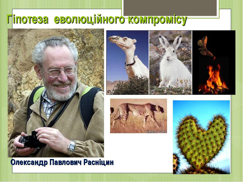 Гіпотеза еволюційного компромісу Олександр Павлович Расніцин