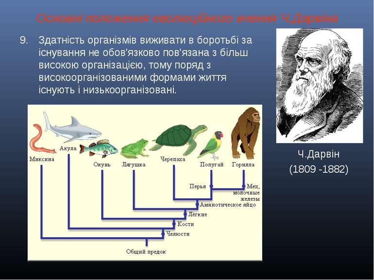 Основні положення еволюційного вчення Ч.Дарвіна Ч.Дарвін (1809 -1882) Здатніс...