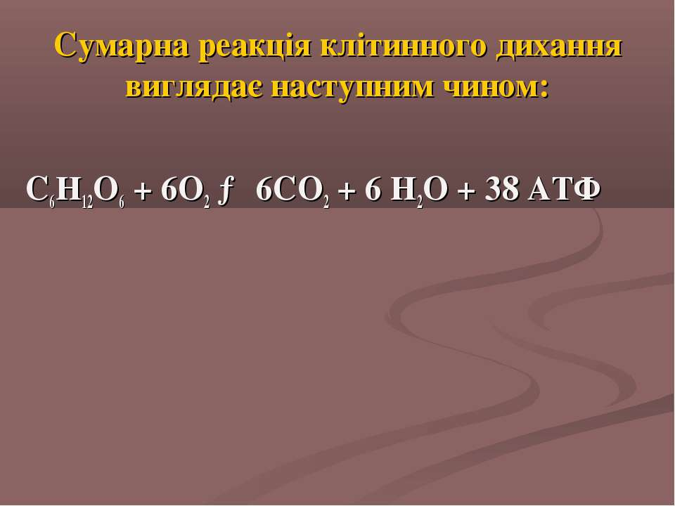 Сумарна реакція клітинного дихання виглядає наступним чином: С6Н12О6 + 6О2 → ...