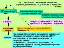 ІЛ6 виробляється макрофагами лімфоцитами, ендотелієм, остеобластами, хондробл...