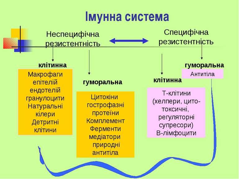 Імунна система Специфічна резистентність