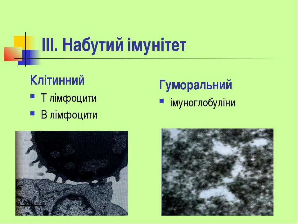 ІІІ. Набутий імунітет Клітинний Т лімфоцити В лімфоцити Гуморальний імуноглоб...
