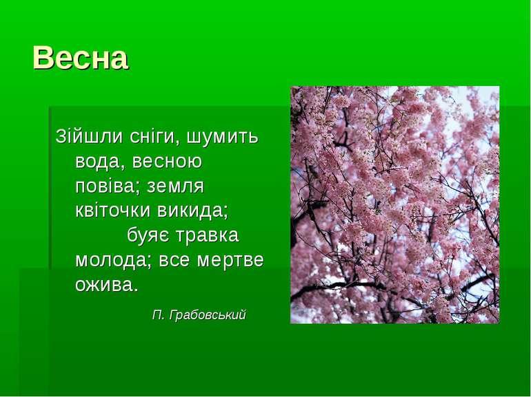 Весна Зійшли сніги, шумить вода, весною повіва; земля квіточки викида; буяє т...