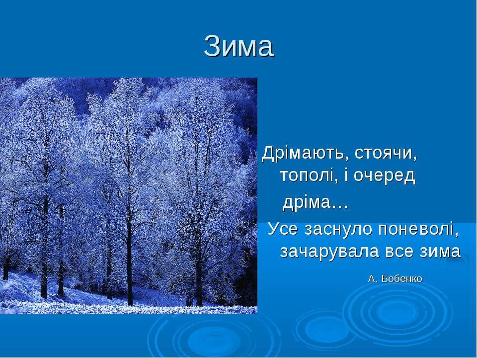 Зима Дрімають, стоячи, тополі, і очеред дріма… Усе заснуло поневолі, зачарува...