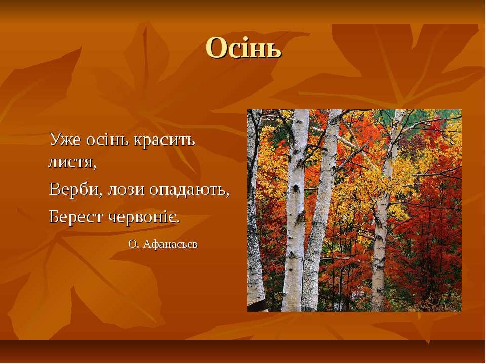 Осінь Уже осінь красить листя, Верби, лози опадають, Берест червоніє. О. Афан...
