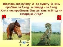 Відстань від пункту А до пункту В кінь пробігає за 9 год., а гепард – за 8 го...