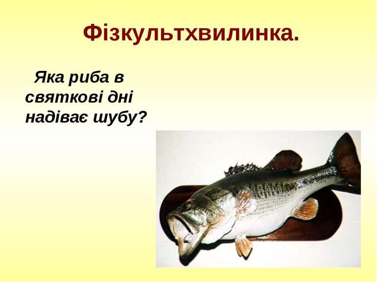 Фізкультхвилинка. Яка риба в святкові дні надіває шубу?