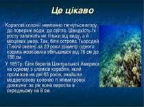 Це цікаво Коралові колонії невпинно тягнуться вгору, до поверхні води, до сві...