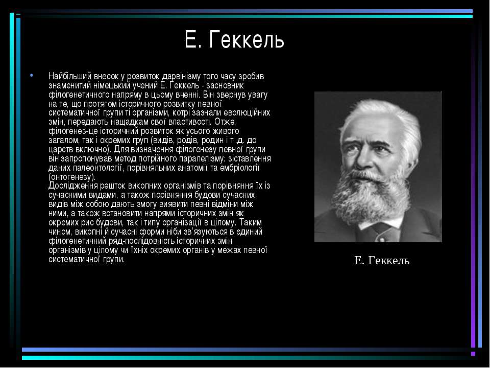 Е. Геккель Найбільший внесок у розвиток дарвінізму того часу зробив знаменити...