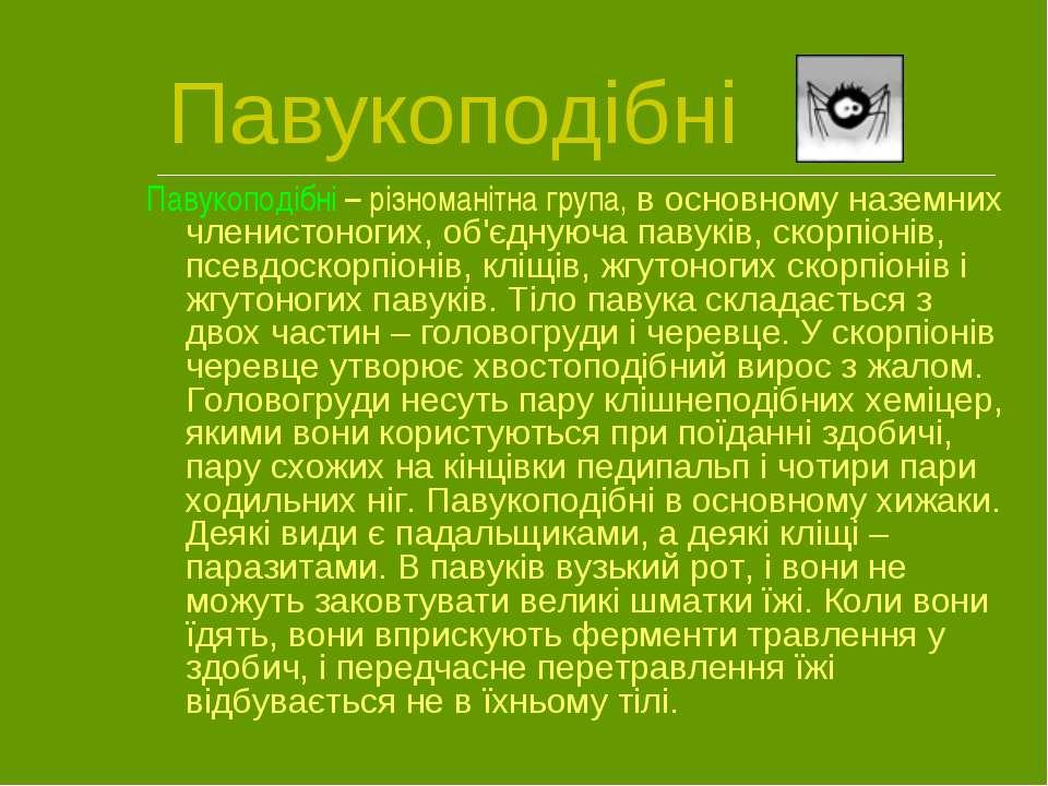 Павукоподібні Павукоподібні – різноманітна група, в основному наземних членис...