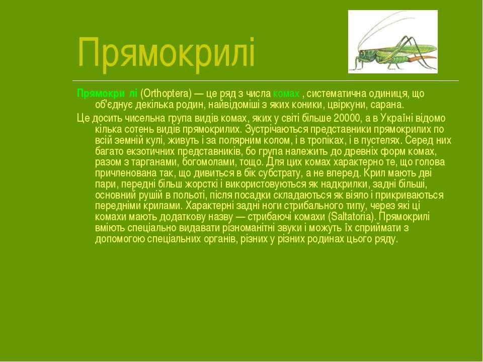 Прямокрилі Прямокри лі (Orthoptera)— це ряд з числа комах , систематична оди...