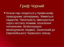 Гриф Чорний Кілька пар гніздиться у Кримському природному заповіднику. Живить...