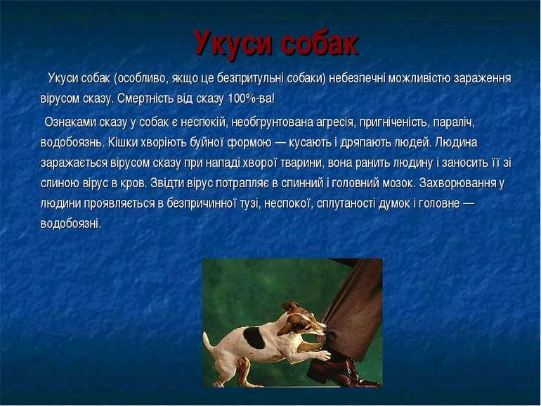 Укуси собак Укуси собак (особливо, якщо це безпритульні собаки) небезпечні мо...