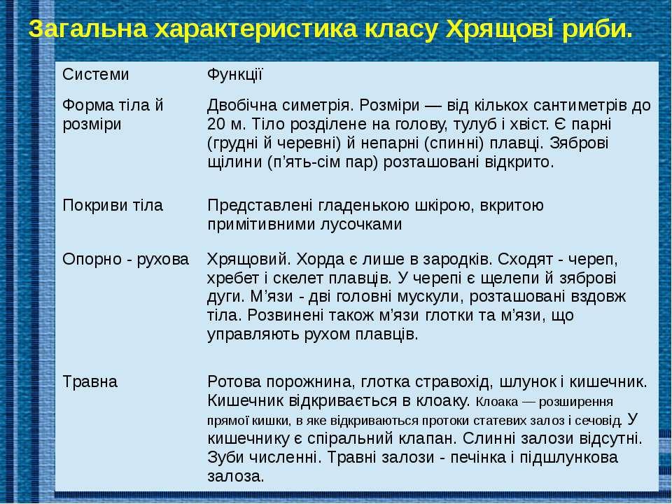 Внутрішня будова молюска Загальна характеристика класу Хрящові риби. Системи ...
