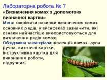 Лабораторна робота № 7 «Визначення комах з допомогою визначної картки» Мета: ...