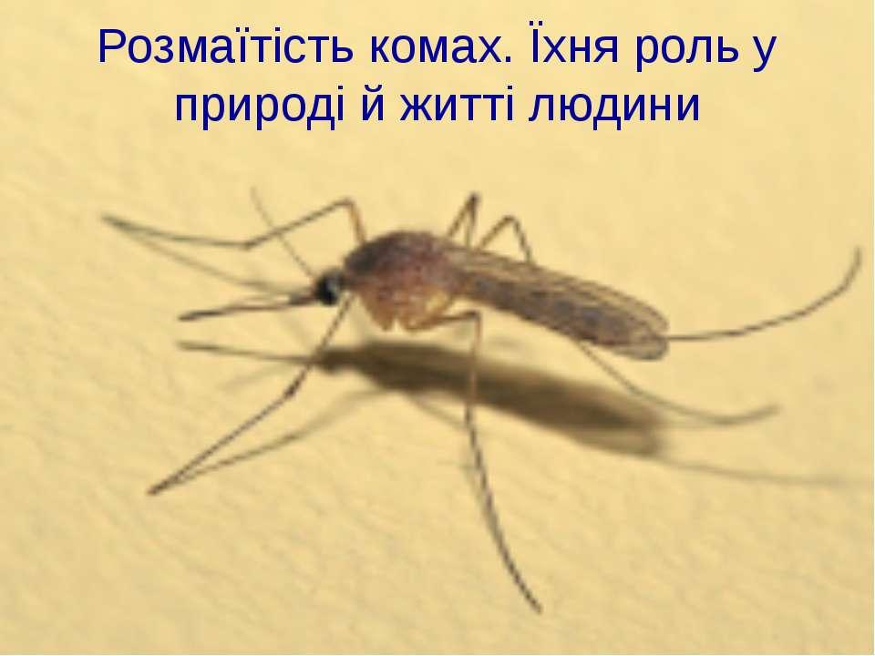Розмаїтість комах. Їхня роль у природі й житті людини