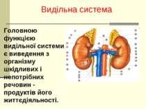 Видільна система Головною функцією видільної системи є виведення з організму ...