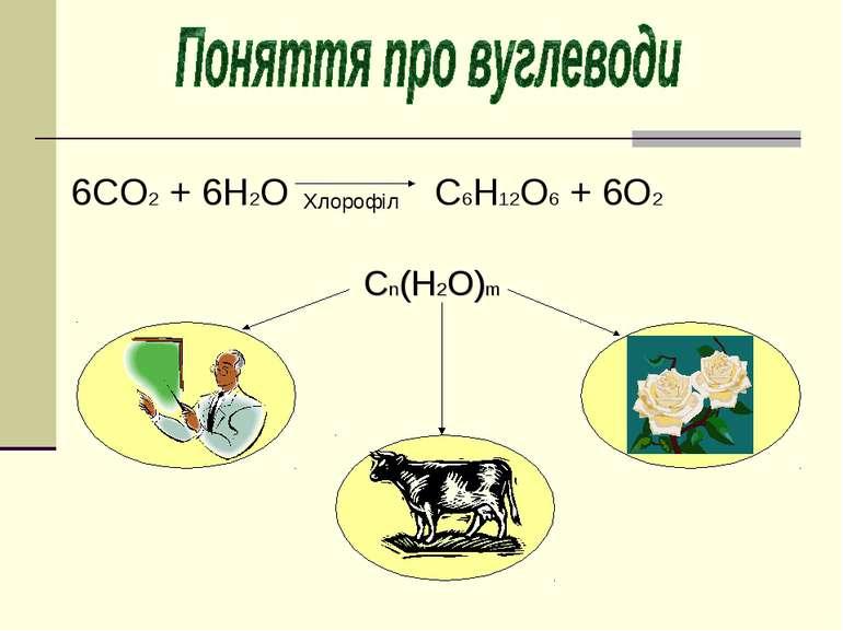 6СO2 + 6H2O C6H12O6 + 6O2 Хлорофіл Сn(Н2O)m