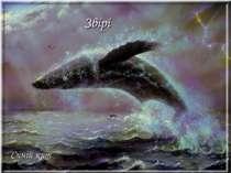Звірі Синій кит