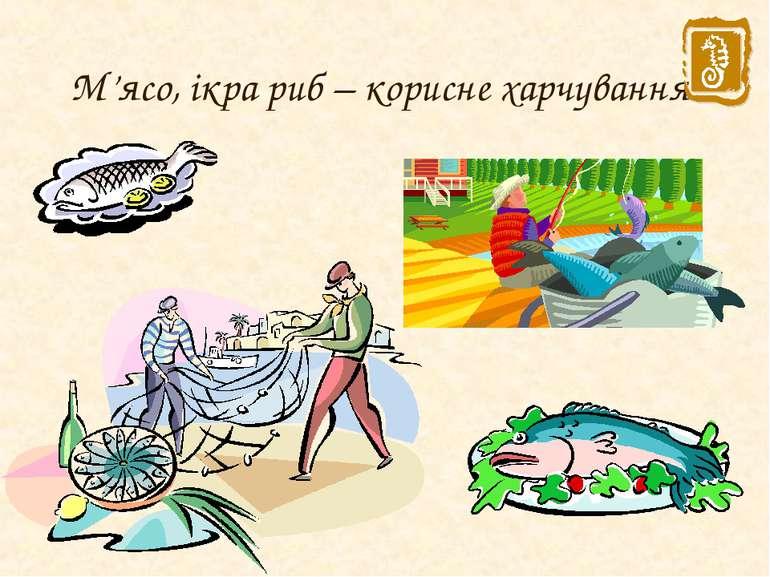 М'ясо, ікра риб – корисне харчування.