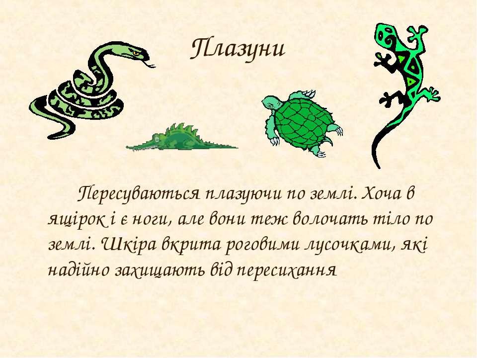 Плазуни Пересуваються плазуючи по землі. Хоча в ящірок і є ноги, але вони теж...