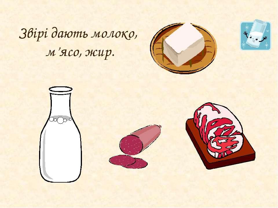 Звірі дають молоко, м'ясо, жир.