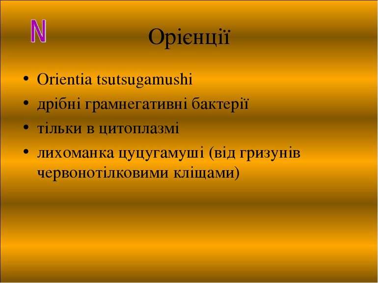 Орієнції Orientia tsutsugamushi дрібні грамнегативні бактерії тільки в цитопл...